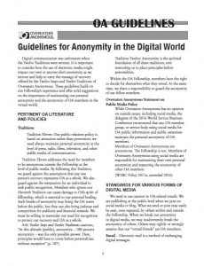 Online Anonymity Guidelines
